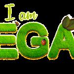 how to go vegan checklist