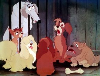 the dogs of lady and the tramp - YouTube