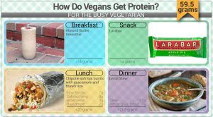 how do vegans get protein busy