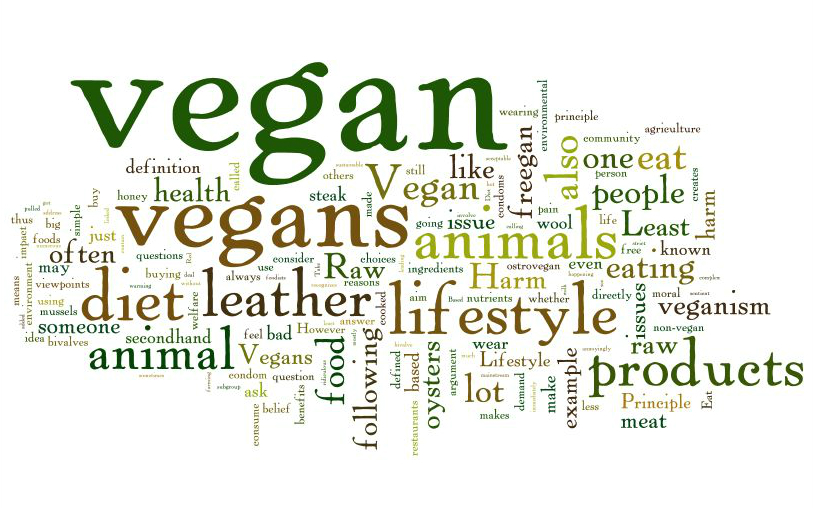 what is a vegan?