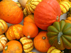 Good Fats, Winter Squash